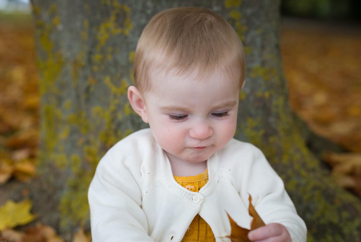 Baby leaf autumn beautiful