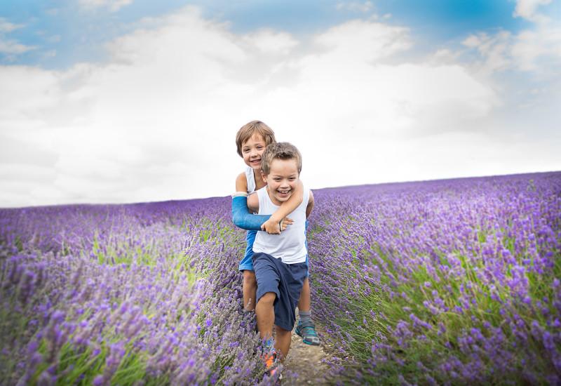 lavender-blog-8