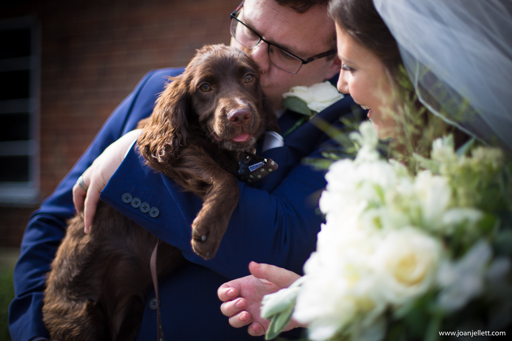 bride and groom with their puppy Dotty