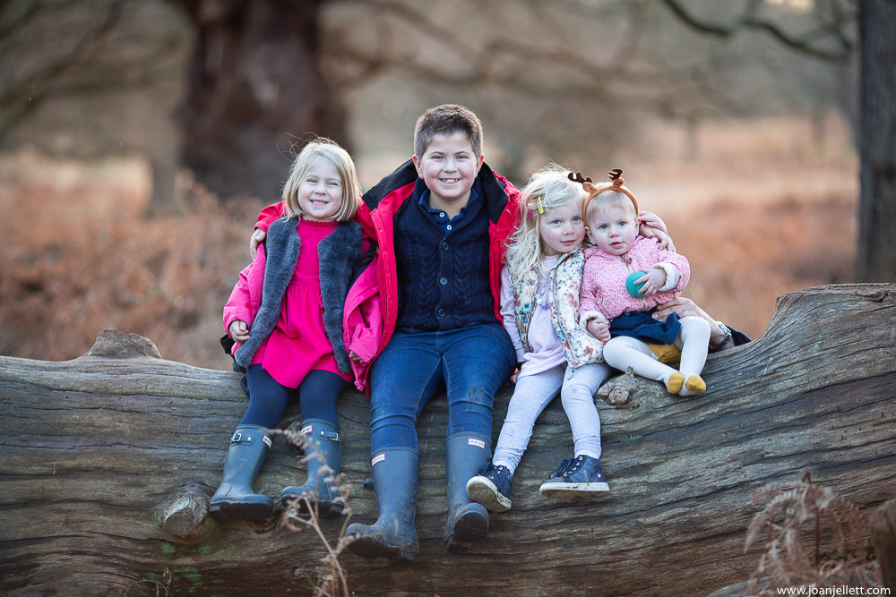 the children on a tree in Richmond photography